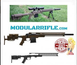 AB ARMS MOD X GEN III MODULAR RIFLE SYSTEM-Rifle Chassis System