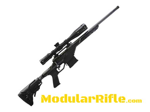 Savage Arms 10BA Stealth Rifle | | Savage Rifles